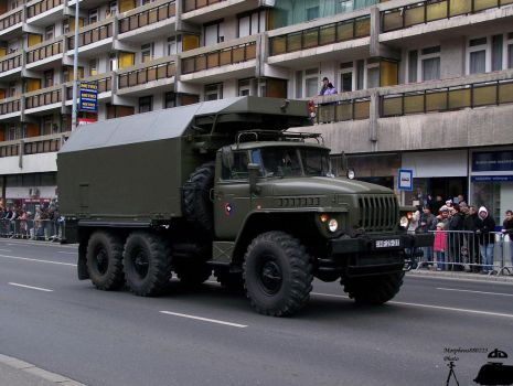 march past in Gyor 2010 -4 by morpheus880223