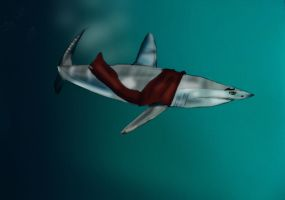 Mako Shark by Ninetynineprobs