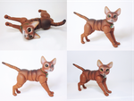 Jacob, Abyssinian Cat Ball Jointed Doll! 3 by vonBorowsky