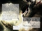 Hidden Secrets Cover by wickedsoulsbook