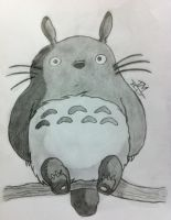 My Neghbour Totoro by TinyTinaa