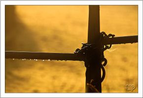 Chained by SnapperRod