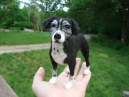 Laila, the Needle Felted Border Collie mix by JessieDockins