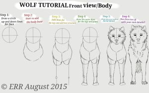 Wolf Tutorial: part 5 FrontView/body by ValsparinDragon