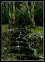 Steps to the Forest by Bladewing-Flash