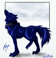 .::Wolfs Rain_Blue::. by WhiteSpiritWolf