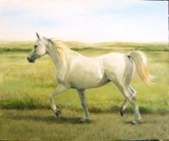 Arabian Mare - oil paint by akuinnen24