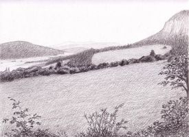 wide valley by siskin