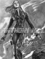 Black Widow-Winter Soldier by Wanted75