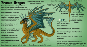 Bronze Dragon Reference Sheet by chaosinvert