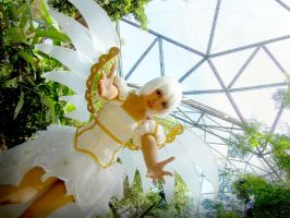 in the huge bird cage by oruntia