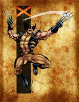 Wolverine by Chronicle-l