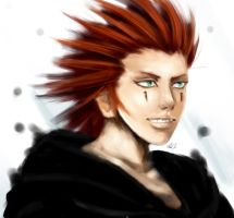 Farewell Axel (Kingdom Hearts) by ukalayla