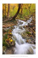 Plitvice Lakes 2012 - VI by DimensionSeven