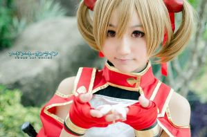 SAO Silica Cosplay by minimumdes