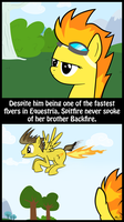 Spitfire's Brother by MrBastoff