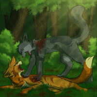 Training fight by shadowfeather01