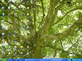 Tree Current Wallpaper by supersmeg123