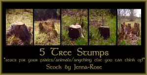 Tree Stump Stock Pack by Jenna-RoseStock