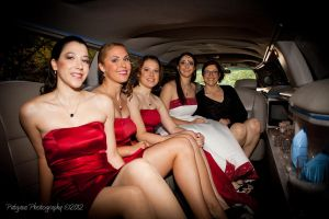 Ladies in the limo by patganz