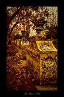 The Autumn Path by Inebriantia