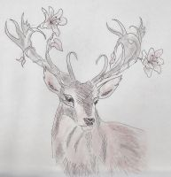 floral stag / spring sawsbuck by w01fg4ng