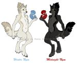 Winter and Midnight by Shadow-Wolf