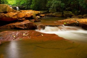 Deckers Creek Flow by LAlight