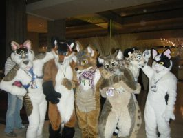 MFF 2010 Group of Furrys by inubasket-savvy
