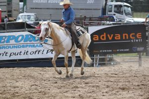 Taupo Rodeo 125 by Sooty-Bunnie