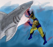 Wolverine VS Shark by Fidget-The-Midget