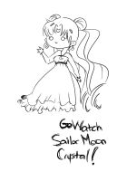 Sailor Moon Crystal! Watch now! by bunnimation