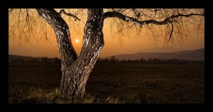 Sunset by AaronLewis