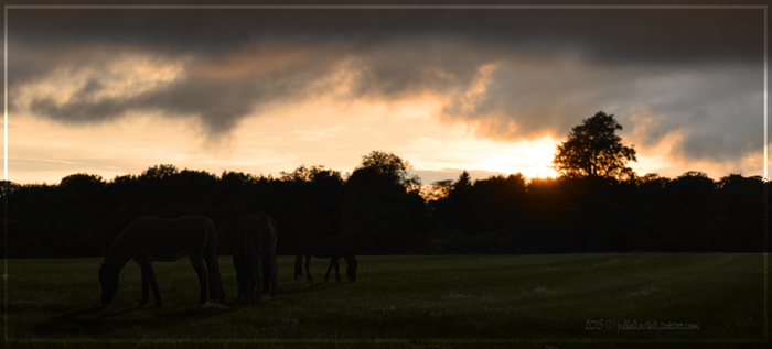 Sunset for the Racers by Jullelin