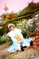 CCS - Teddy Bear by acophoto