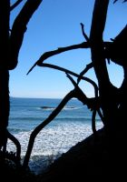 Window to the Sea by nolwen