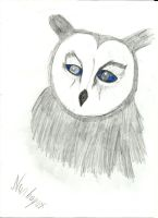 Owl by vynil123mlp