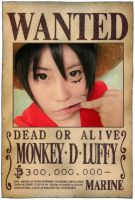 One Piece Luffy by r-kira