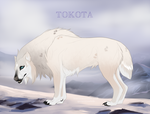 Yuki no seibo 19079 by TotemSpirit