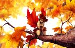 The Maple Fairy by DreamerWhit