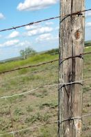 Fence Post by TheDayILiveFor