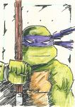 TMNT Donnie Sketch Card by Graymalkin2112