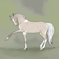 BSS DNS Sinja old reference by GabiHorseArt98