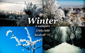 Winter '11 by bazdesh