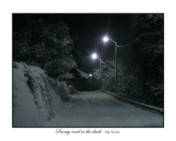 Snowy road in the dark by lexidh