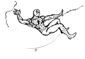 Spider-Man by rubioric