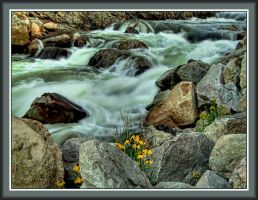 Big Thompson Rapids by papatheo