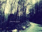 Take Me Home. by GaGa-lover