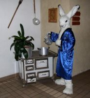 A hares kitchen by Tioh