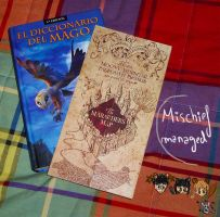 The Marauder's Map by Okami-Moony